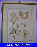 I miei lavori Rosi 68-il-melo-jpg