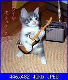 compleanno roshann-15-gattini10no8micio-guitar-jpg