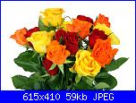mercoledì 11 luglio 2012-1-1265210828pahn-jpg
