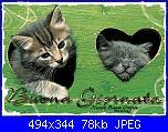 venerdì 30 novembre 2012-buona-giornata-gattini_ondina-jpg