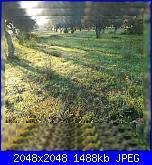 Giovedì 18 ottobre 2018-1539843967055-jpg