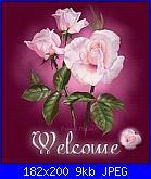 dalida: Ciao a tutte sono nuova del forum...-117607-26510025-200-jpg