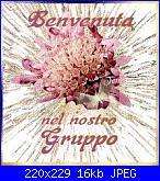 mara v: Ciao mi presento-images-jpg