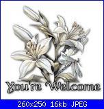 Barbara B.: Mi chiamo Barbara-your_welcome_white_flowers-jpg