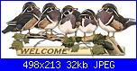 ele3: Buongiorno!!!!!!!-08_duck_welcome-jpg