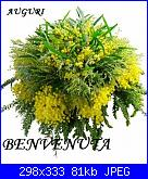lory85: ciao sono Lory85-mimose-jpg