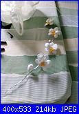 orchidea consigli-img_20190925_153634-jpg