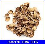 fiori di bucce di pistacchio-200101-27636955-m750x740-jpg