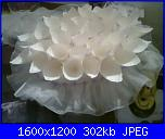 coni per il riso-foto0139-jpg