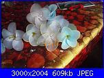I miei  fiori di filanca ( calze)-dscf4607-jpg