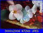 I miei  fiori di filanca ( calze)-dscf4609-jpg