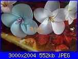 I miei  fiori di filanca ( calze)-dscf4610-jpg
