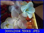 I miei  fiori di filanca ( calze)-dscf4612-jpg