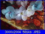 I miei  fiori di filanca ( calze)-dscf4620-jpg