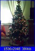 "Foto ""I nostri alberi di Natale e i nostri presepi""-061220101167-jpg"
