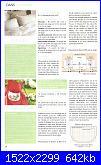 DFEA - Carnet de broderie 06 - Le grand repertoire de motifs - set 2009 *-33-jpg