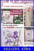 DFEA HS28 - études de botanique *-01-jpg