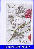 DFEA HS28 - études de botanique *-07-jpg