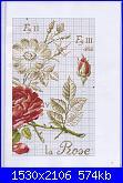 DFEA HS28 - études de botanique *-12-jpg