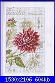 DFEA HS28 - études de botanique *-19-jpg