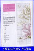 DFEA HS28 - études de botanique *-21-jpg