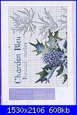 DFEA HS28 - études de botanique *-30-jpg
