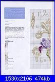 DFEA HS28 - études de botanique *-36-jpg