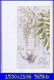 DFEA HS28 - études de botanique *-33-jpg