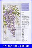 DFEA HS28 - études de botanique *-34-jpg