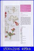 DFEA HS28 - études de botanique *-40-jpg