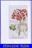 DFEA HS28 - études de botanique *-39-jpg
