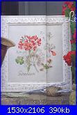 DFEA HS28 - études de botanique *-38-jpg
