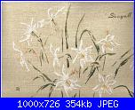 MTSA - Narcisses *-3-seagull-jpg