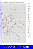 MTSA - Narcisses *-3b-seagull-jpg