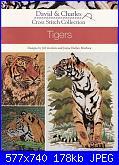 Tigers - Jill Gordon e Jayne Netley Mayhew - 2004-tigers-jill-gordon-e-jayne-netley-mayhew-2004-jpg