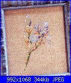MTSA-Les Fleurs *-25-jpg