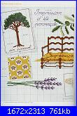 DFEA 19 - Dossier Provence *-4-jpg