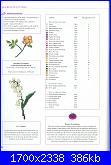 DFEA 19 - Dossier Provence *-20-jpg