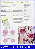 Création Point de Croix N°1 - mar-apr 2010 *-174336-61395-29454311-jpg