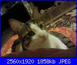 Penelope-foto058-jpg