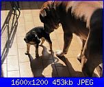 il gigante e la bambina-img_1300-jpg