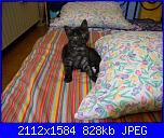 Penelope-neve-125-jpg