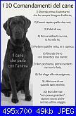 I 10 comandamenti-i-dieci-comandamenti-del-cane-jpg