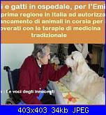 buone notizie : emilia romagna divieto catene per cani e...-409190_472718672798349_565429443_n-jpg