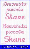 Gli schemi di sharon - 1-benvenuta-piccola-shane-jpg