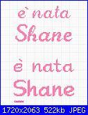 Gli schemi di sharon - 1-nata-shane-jpg