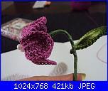 fiori uncinetto-dsc00237-jpg