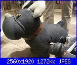 cerco schema per cane-2012-03-19-21-00-57-jpg