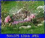 I fiori di Dana2011-bordura-1-dana2011-jpg