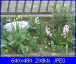il giardino di ciana-immagini-007-jpg